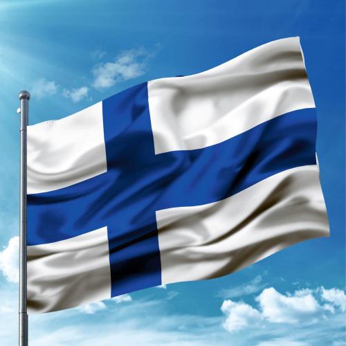 Steag Finlanda