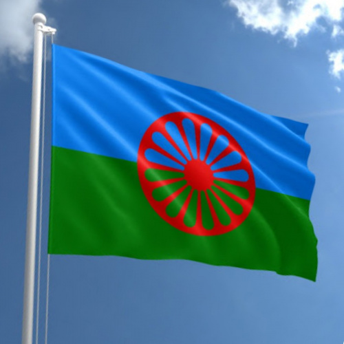 Steag ROMI orizontal personalizat
