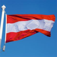 Steag Austria