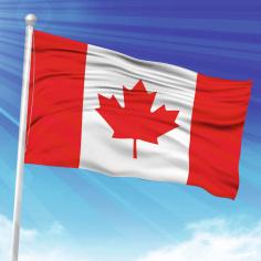 Steag Canada