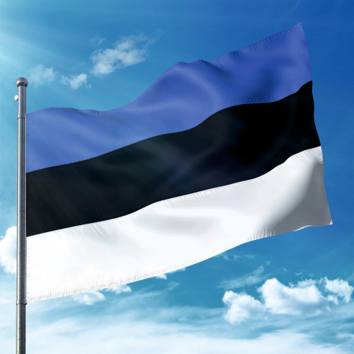 Steag Estonia
