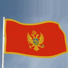 Steag Muntenegru