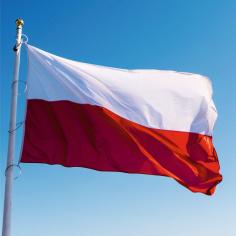 Steag Polonia