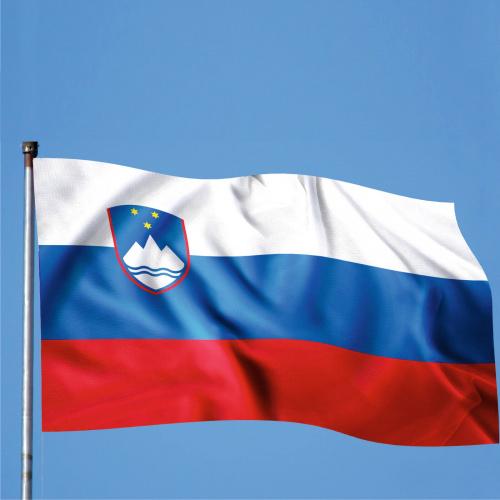 Steag Slovenia