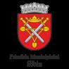 Primari Municipiului Sibiu