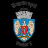 Primaria Sector 1 Bucuresti